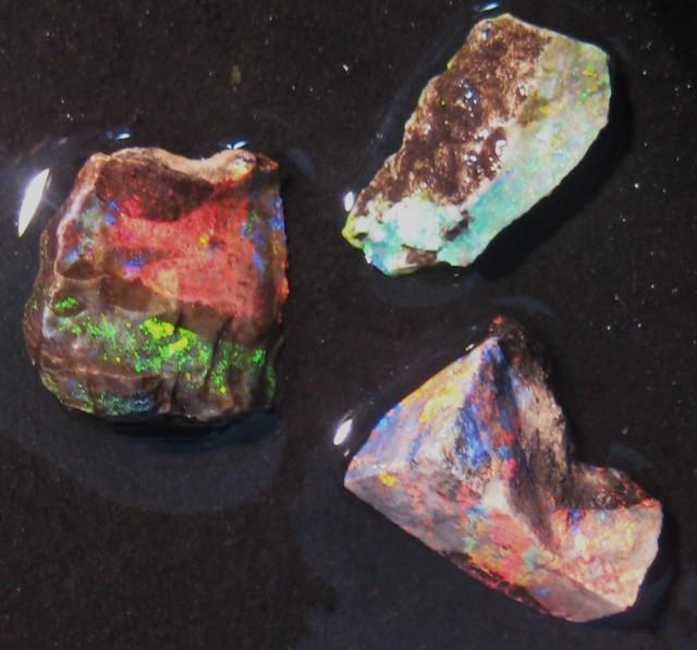 3 pieces Australian Andamooka Matrix Rough Opal