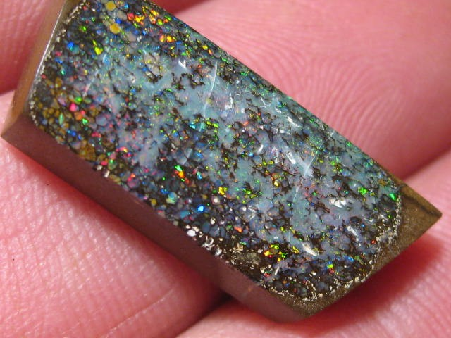 OpalWeb - Boulder Opals from Yowah - 16.1Cts -