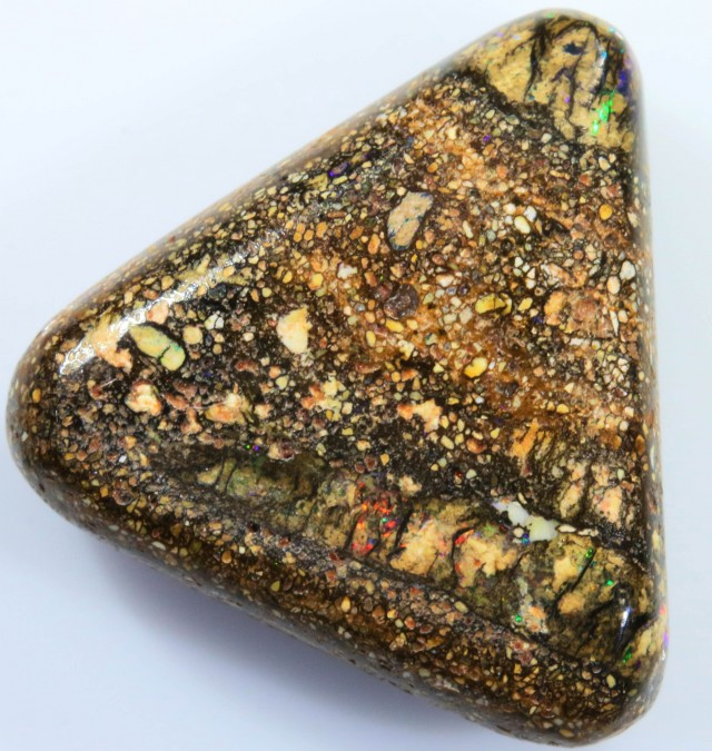 11.00 CTS BOULDER WOOD FOSSIL-WINTON [SO7751]