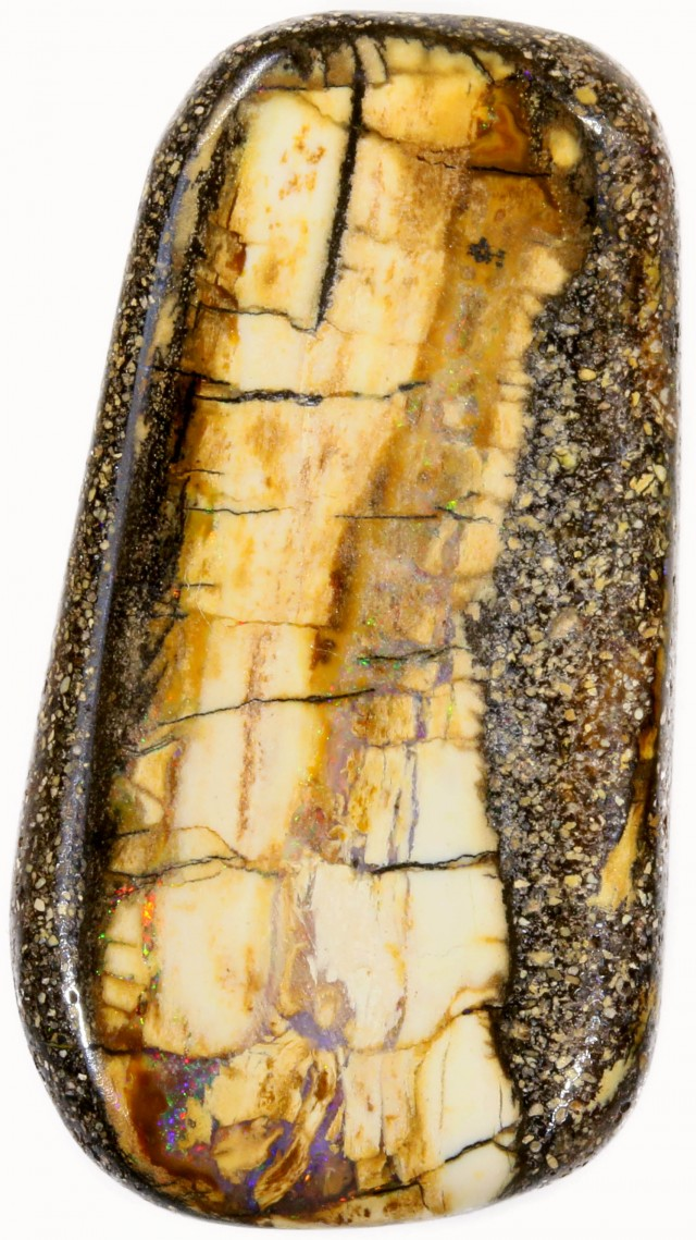 24.95 CTS BOULDER WOOD FOSSIL-WINTON [SO7790]