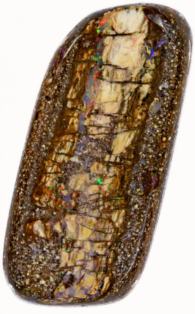29.05 CTS BOULDER WOOD FOSSIL-WINTON [SO7805]