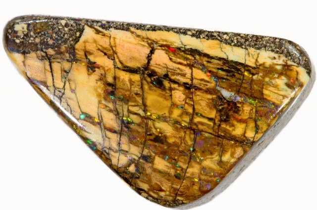 15.70 CTS BOULDER WOOD FOSSIL-WINTON [SO7852]
