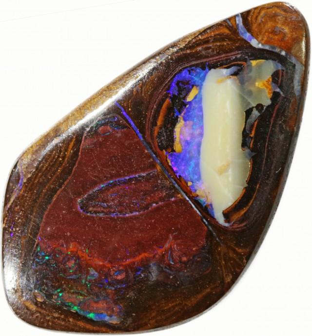 46 cts Drilled Koroit Boulder Opal BU2676