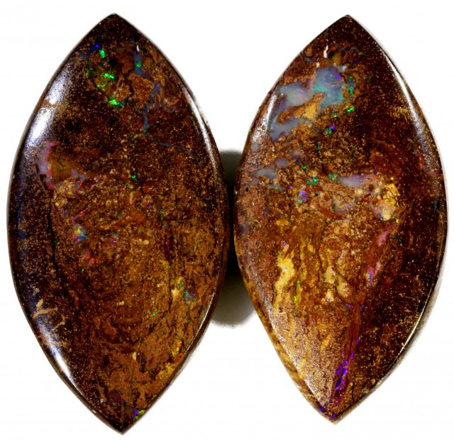 56 Cts Pair Boulder Wood Fossil CF885