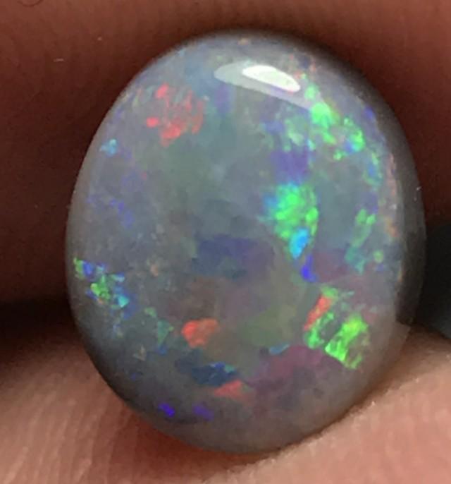1.90ct Lightning Ridge Gem Dark Opal LR227