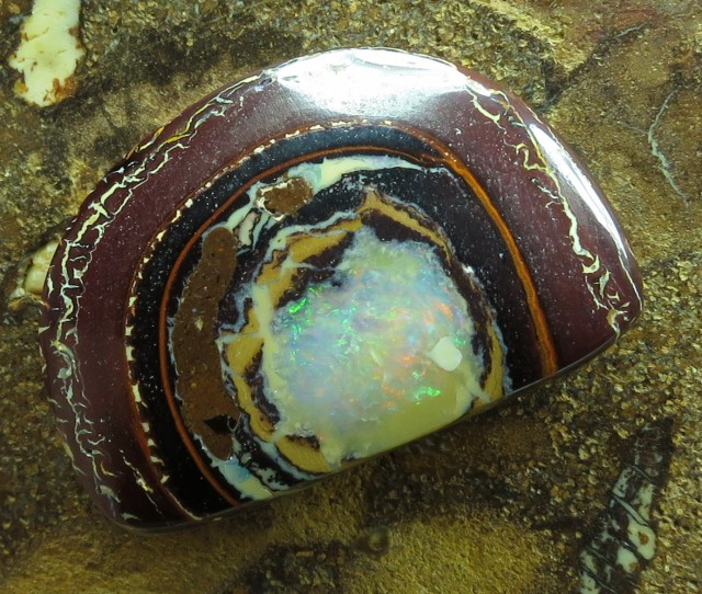 "22cts.""YOWAH NUT OPAL~FROM OUR MINES"""