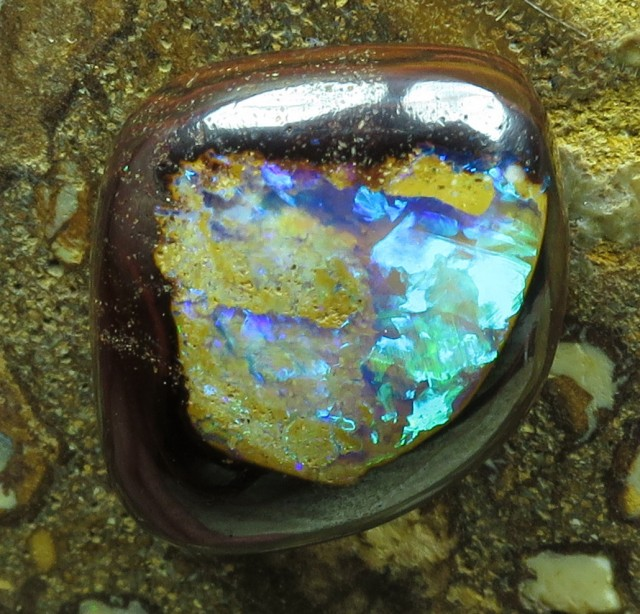"16cts.""YOWAH NUT OPAL~FROM OUR MINES DIRECT 2U"""