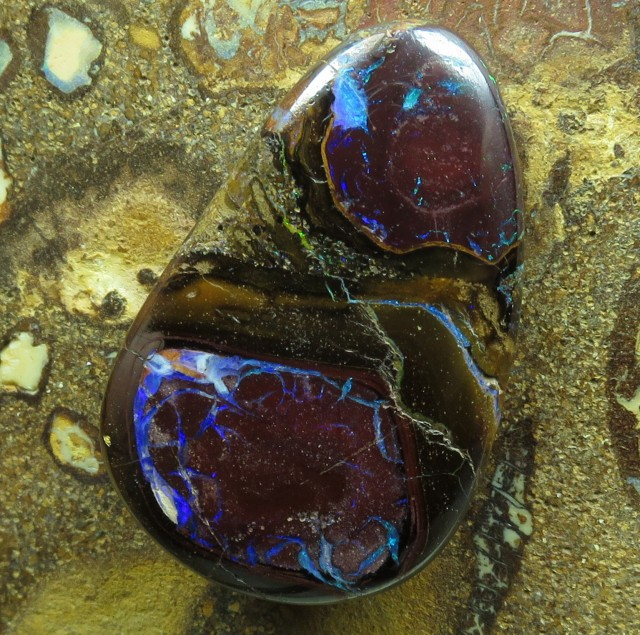 "31cts.""BOULDER MATRIX OPAL~FROM OUR ACTIVE MINES"""