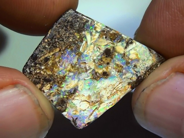 13.85 ct Multi Color Opalised Wood Solid Boulder Opal