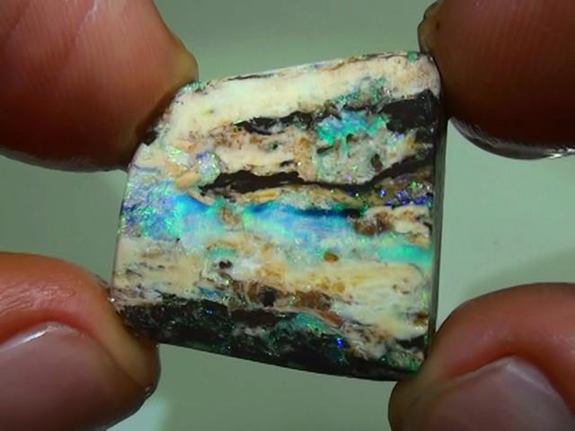 24.45 ct Boulder Opal Wood Fossil Rough Rub