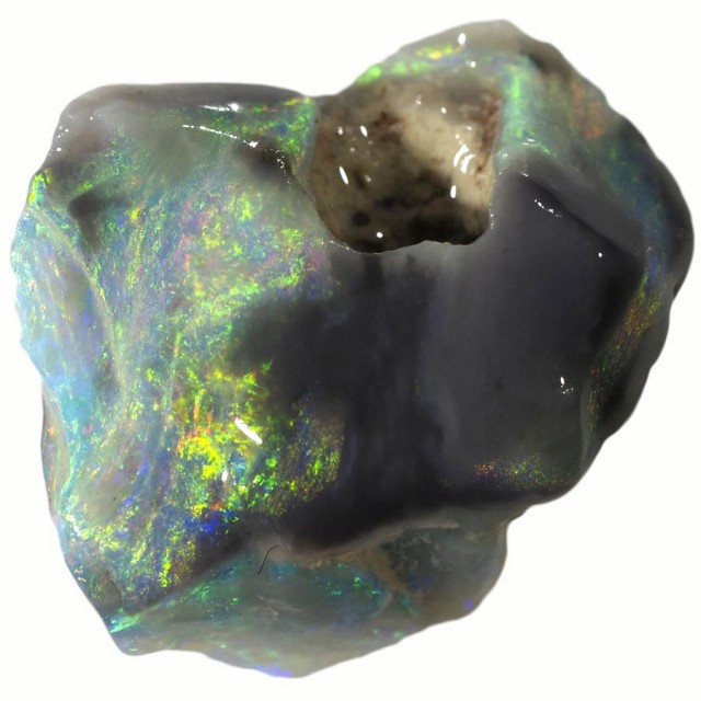 6.00 CTS GAMBLE  COLOURFUL ROUGH FROM LIGHTNING RIDGE [BR5734]