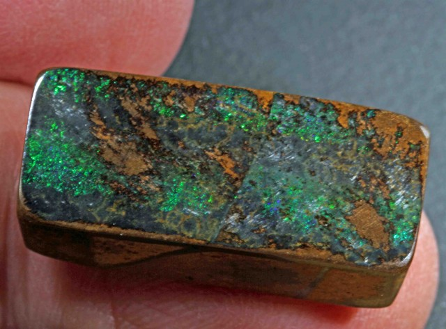 41.2 ct  NICE BOULDER OPAL FROM WINTON AREA