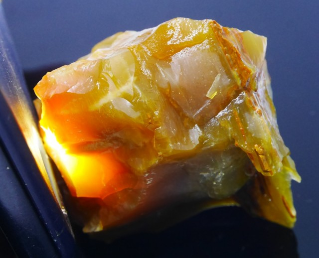 503.75 CRT RARE INDONESIAN CRYSTAL OPAL POTCH WOOD ROUGH