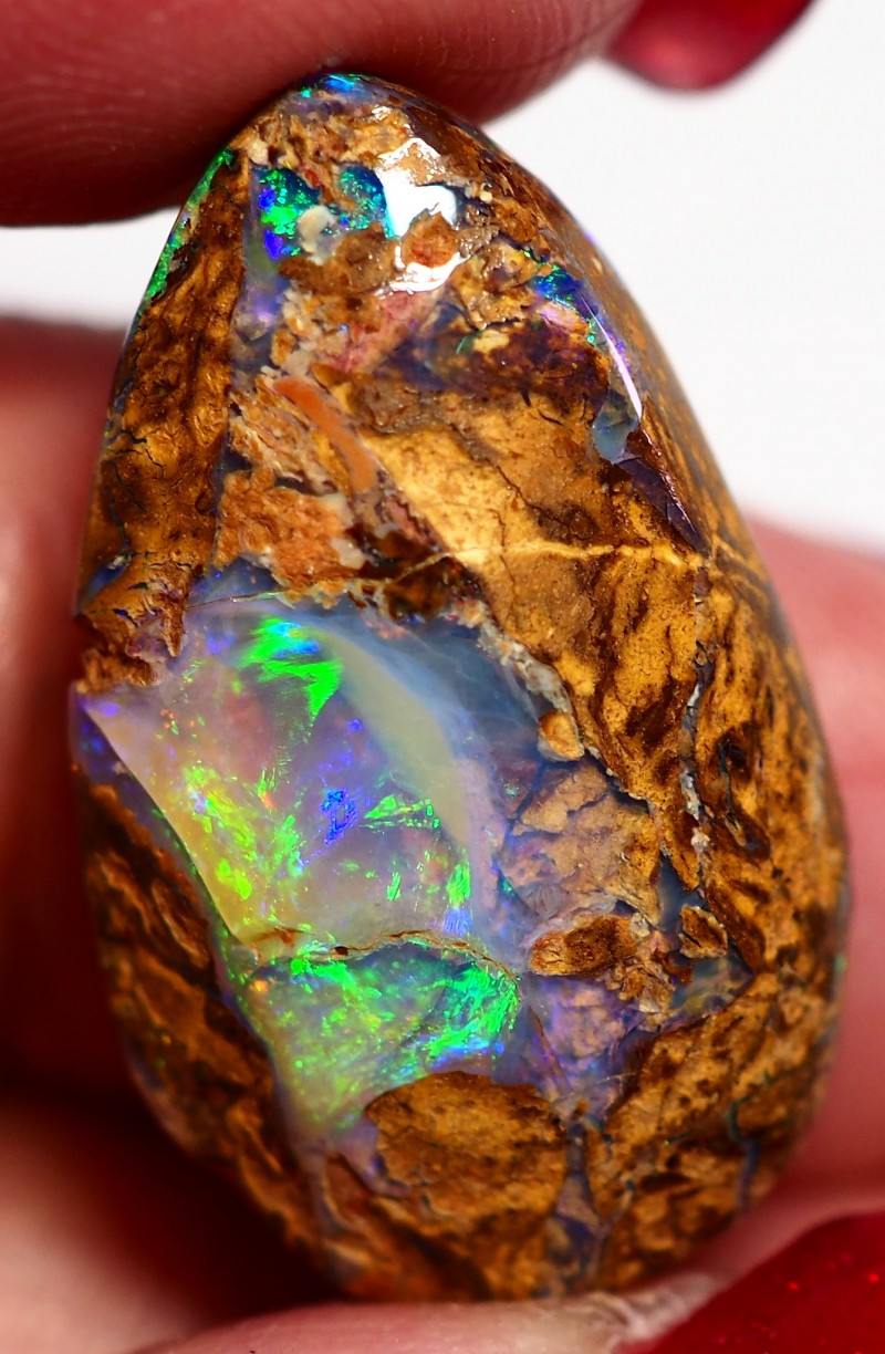 13 65ct View Wood Fossil Boulder Opal Gm551