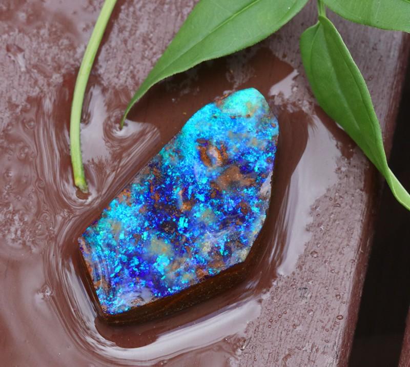 Rough Opal Boulder from Winton Queensland australia SU 341