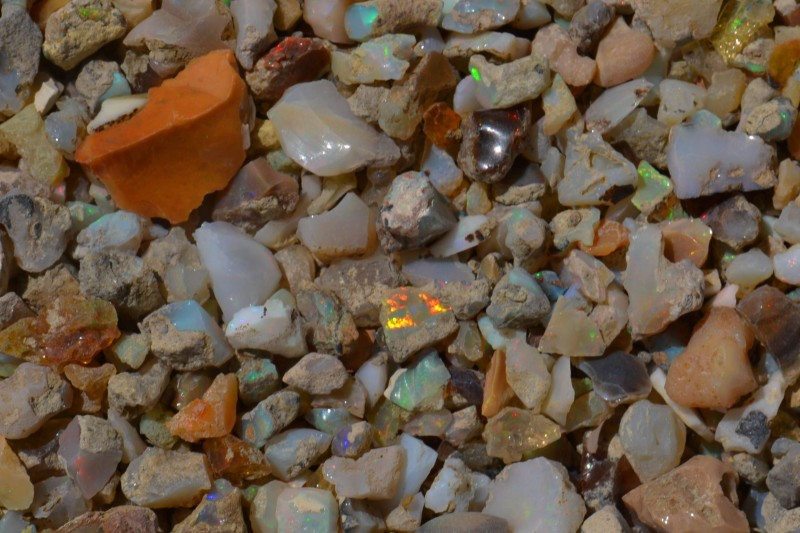 Nice Rough Fossil Opal Rough 110ct Parcel Estayish Mines Ethiopia NR Lot