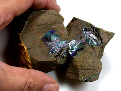 PAIR SPLIT  BOULDER OPAL ROUGH 10.20  0Z OT133