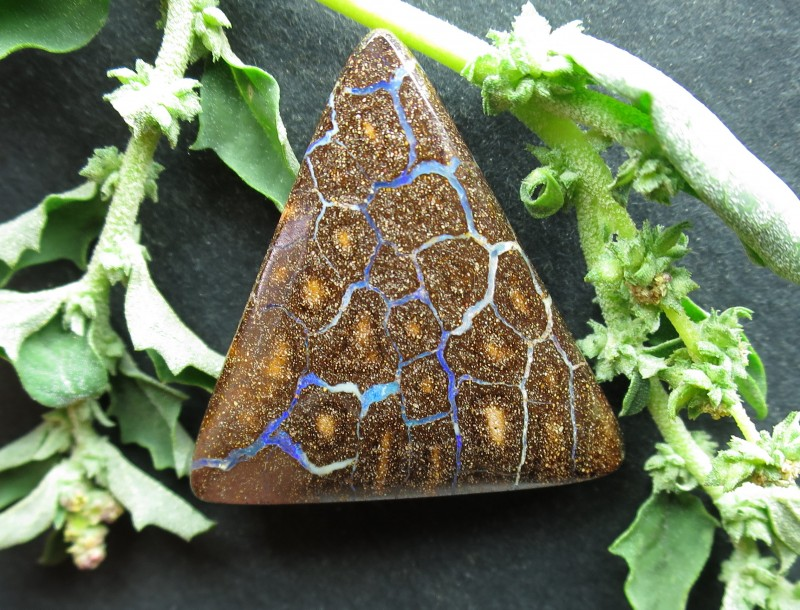 "49cts, ""BOULDER OPAL~FROM OUR MINES"""