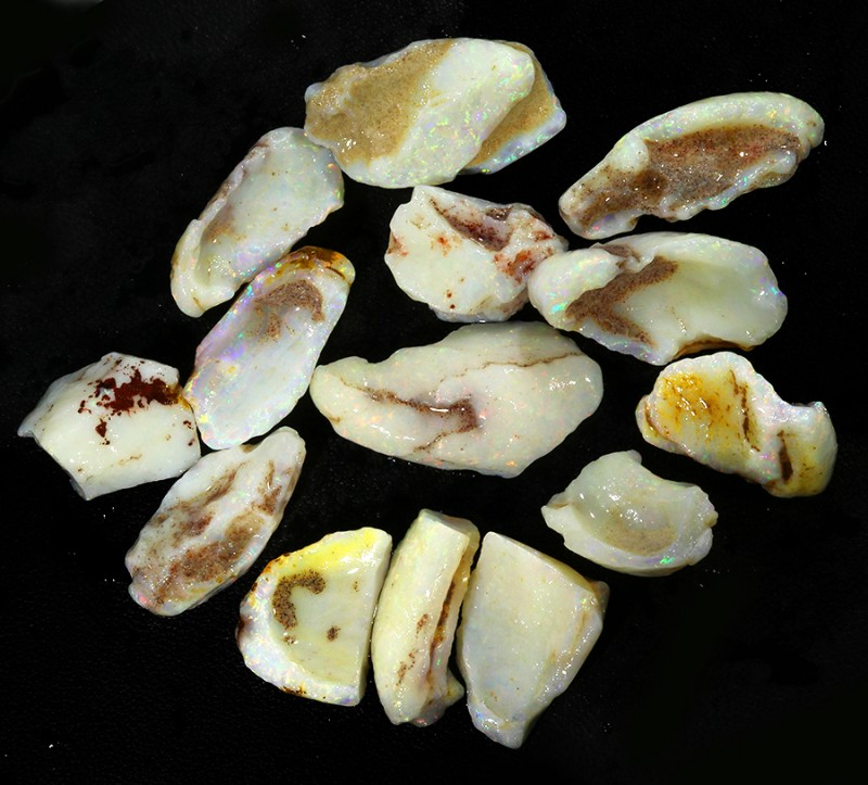120.26Cts 14pcs Opalized clean shell opal rough parcel  SU1349