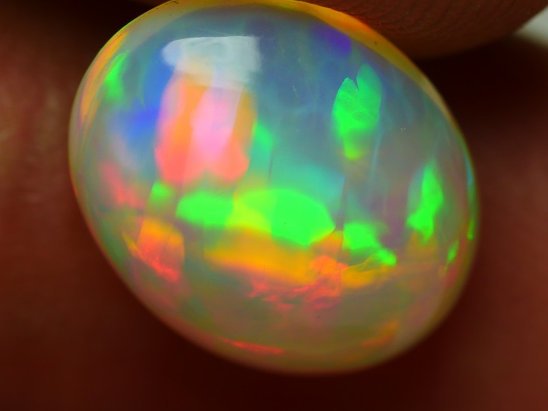 2.15 CRT BEAUTYFULY RIBBON FLORAL PLAY MULTICOLOR WELO OPAL