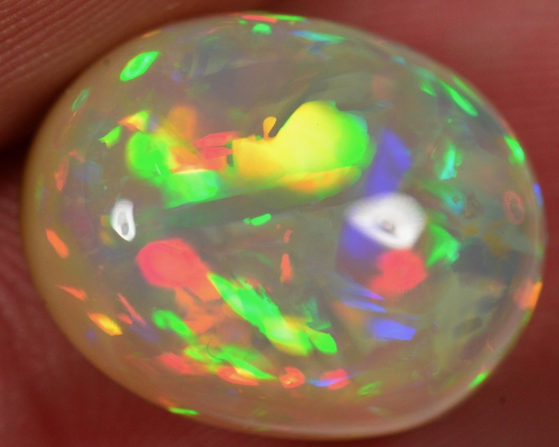 7.1 CT WELO OPAL CABACHON - AN ALLTIME FAVOURITE