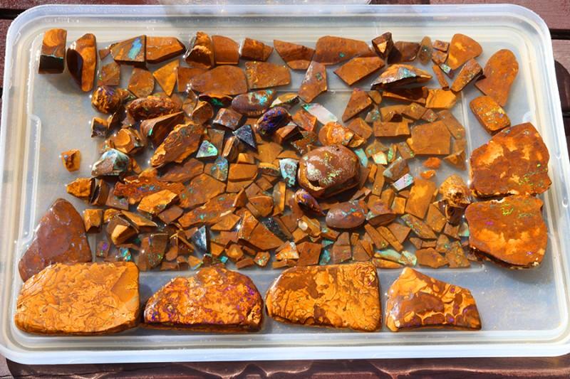 Over Kiilo  Opal cutters  Parcel 218 boulder Opals. WS283