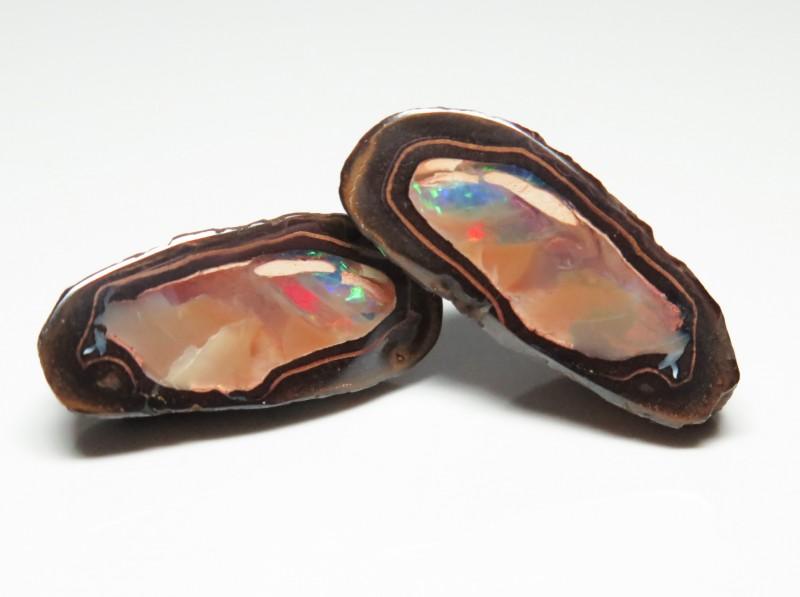 38.70ct Queensland Boulder Opal Yowah Nut