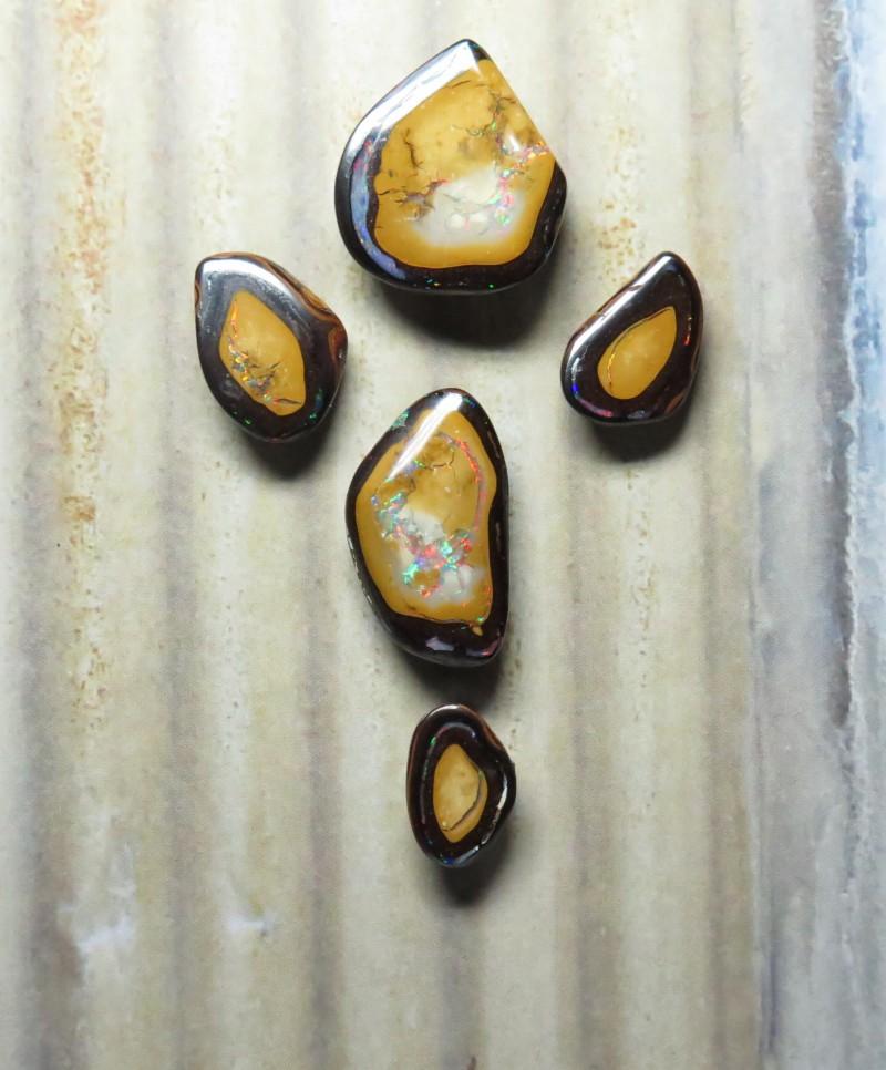 43.45ct Queensland Boulder Opal Yowah Nut Set