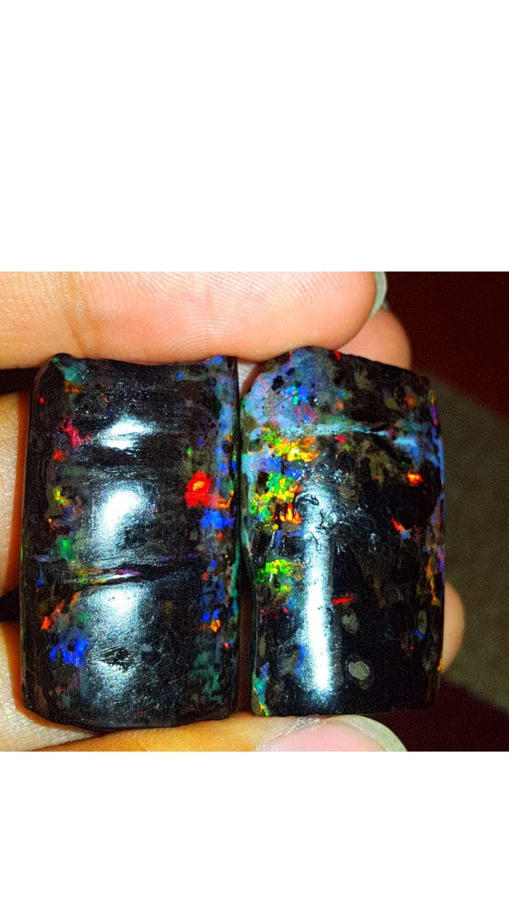 102. 90 CRT GORGEOUS PAIR SPECIMENT BEAUTY COLOR INDONESIAN OPAL WOOD FOSSI