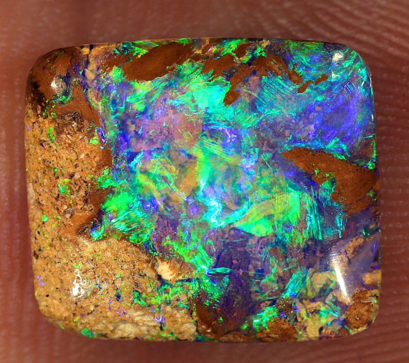 3.65ct 12x10mm Pipe Wood Fossil Boulder Opal  [LOB-2042]