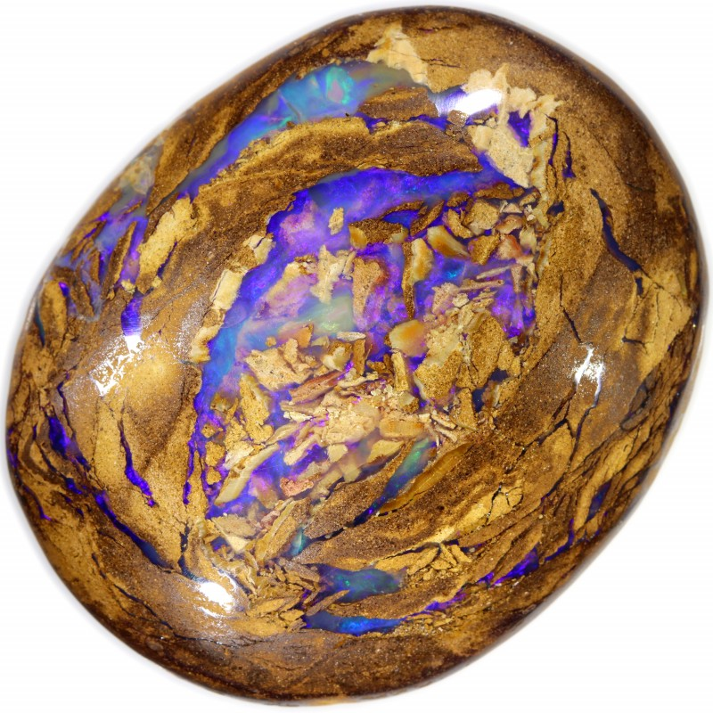 164.30 CTS BOULDER WOOD FOSSIL WELL POLISHED[BMA4621]
