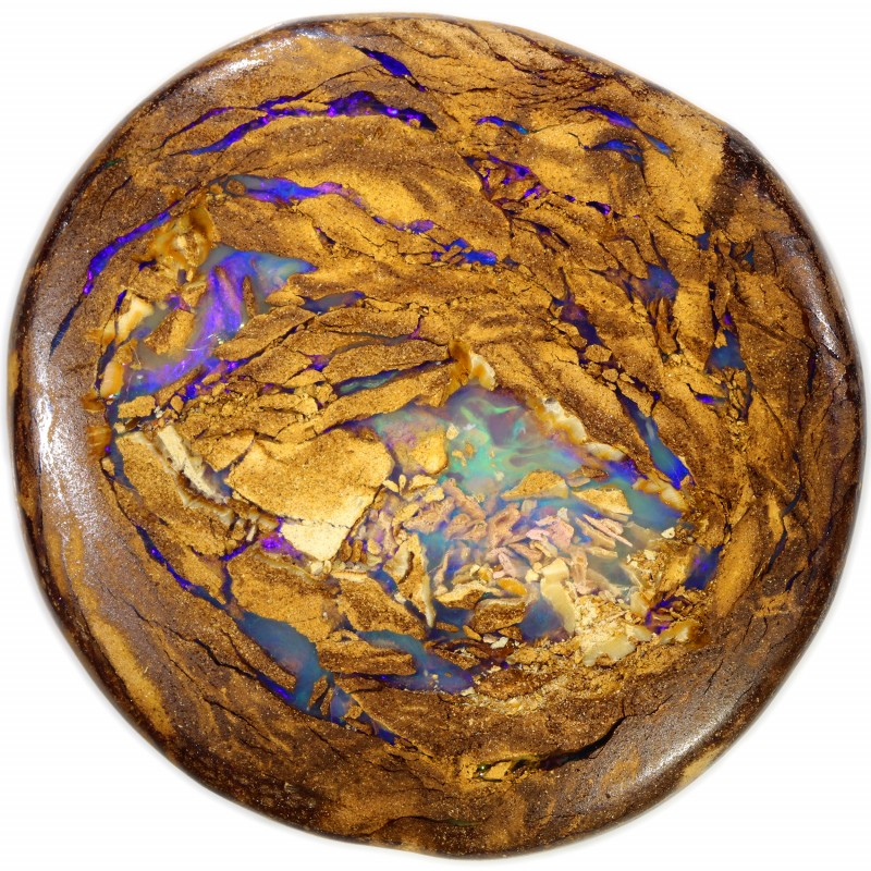 149.50 CTS BOULDER WOOD FOSSIL WELL POLISHED[BMA4625]