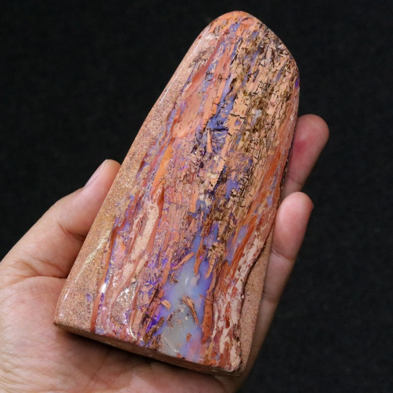 1615.20 CTS BOULDER WOOD FOSSIL WELL POLISHED[BMA4626]