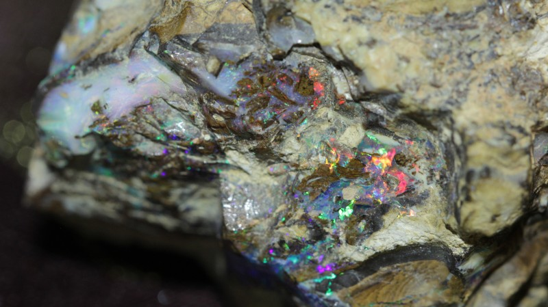 I think there is pretty well all the colors represented.  Very pretty brilliant color in a chunk of fossilized wood.  Heavy feeling ironstone boulder opal fossil wood.