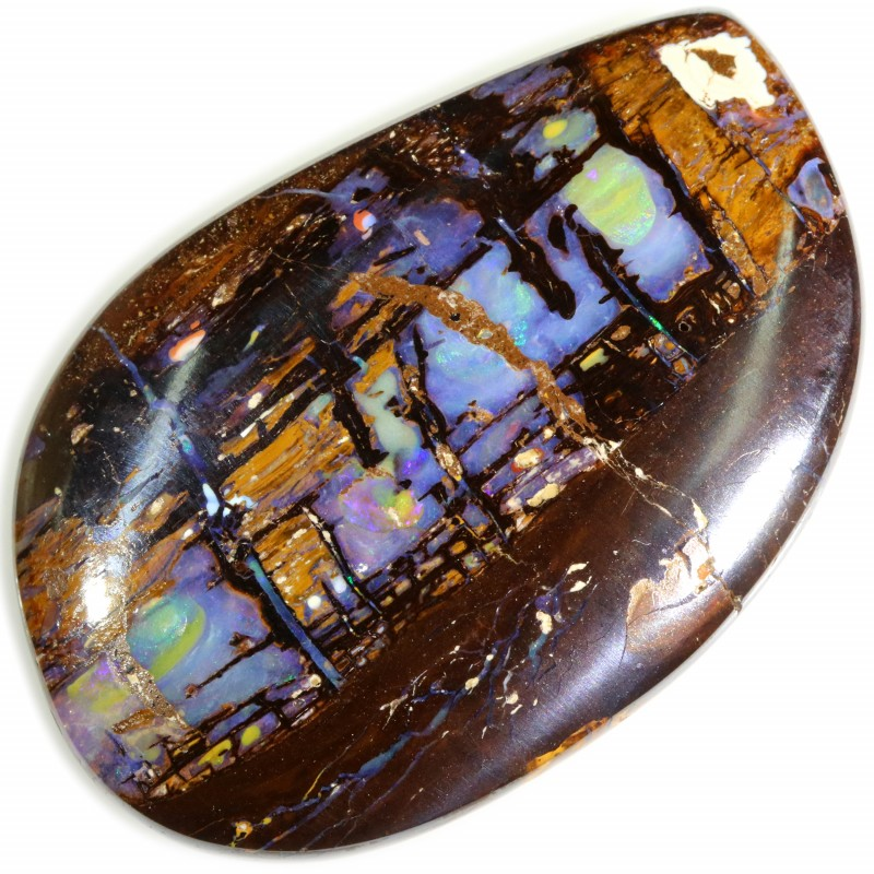 55.05 CTS BOULDER WOOD FOSSIL WELL POLISHED[B-SAFE113]
