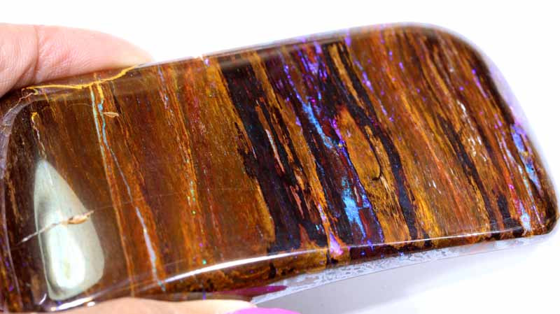 487CTS-BOULDER OPAL RARE PALM WOOD FOSSIL SPECIMENS FO-795
