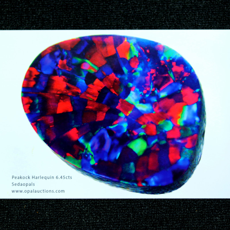 OPAL POSTERS HARLEQUIN PATTERN -QUALITY GLOSSY PAPER A4 SIZE