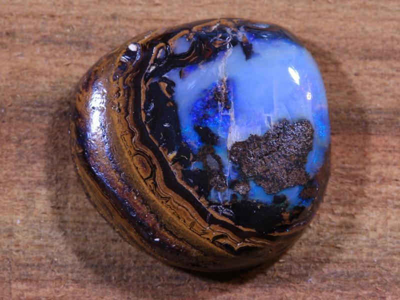 12.50ct - PEGASUS-Koroit Boulder Opal [20883]
