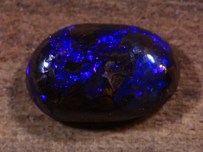0.9ct --Cyanocitta cristata --   Koroit Boulder Opal [20885]