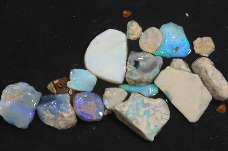 55ct Mixed Australian Craft Rough Opal[21623]
