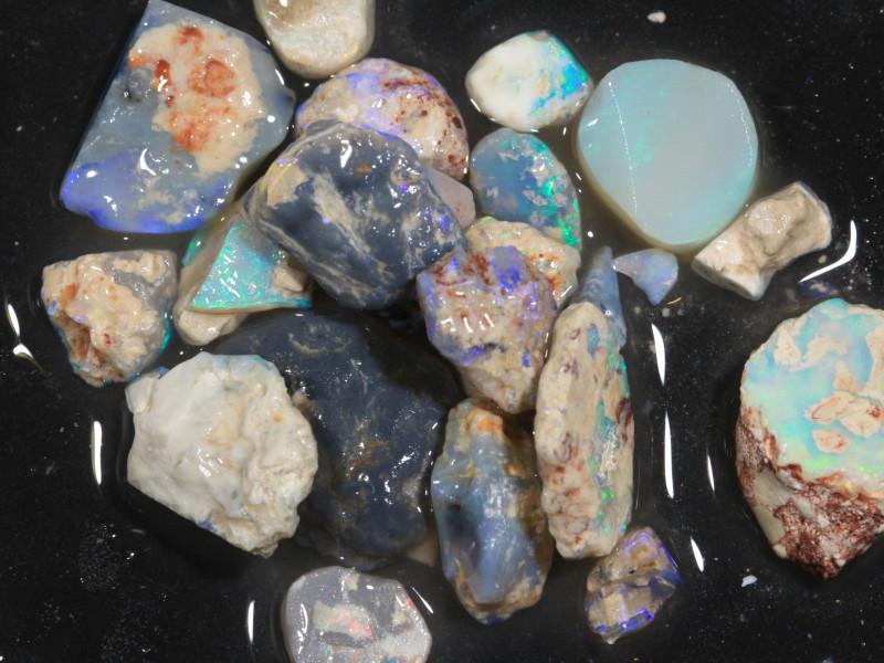 90ct Mixed Australian Craft Rough Opal[21637]