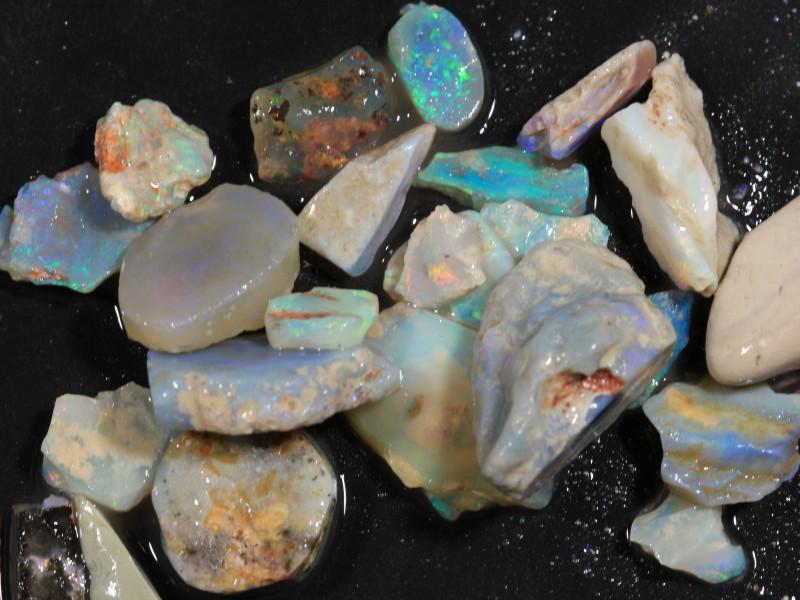 104ct Mixed Australian Craft Rough Opal[21641]