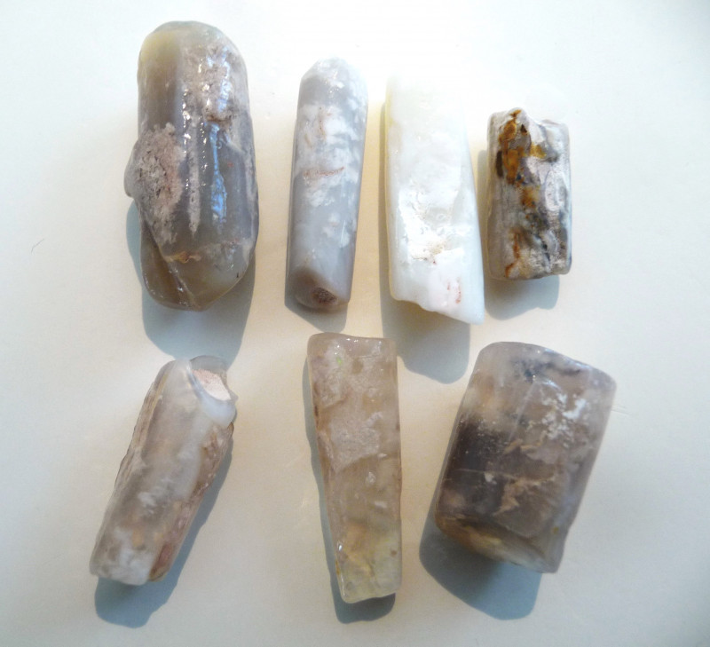 Parcel of 7 Natural Australian Opal Belemnite Fossil Specimens ( 3431     )