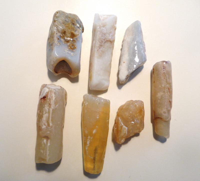 Parcel of 7 Natural Unpolished Australian Opal Belemnite Fossil Specimens (