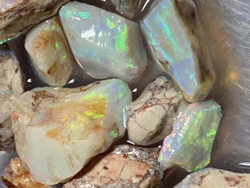 81 CTs SPECIAL PARCEL; Solid/Natural Lightning Ridge Rough Opal, #499