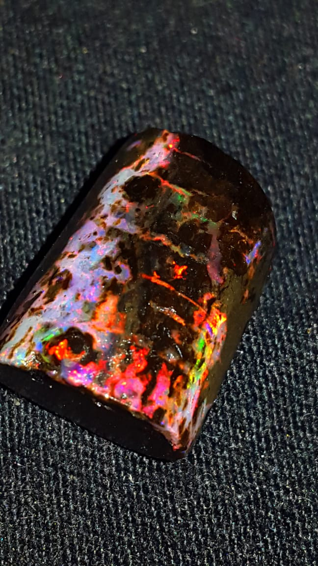 13.00 CRT STUNNING PLAY COLOR FIRE INDONESIAN OPAL WOOD FOSSIL