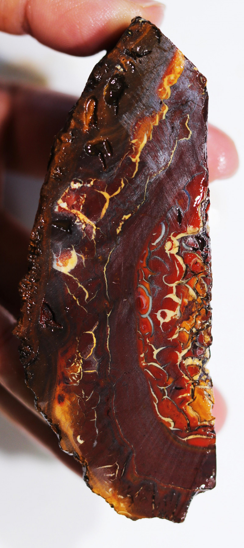 802.80 CTS CHOCOLATE IRONSTONE WITH WHITE OPAL[BY8058]