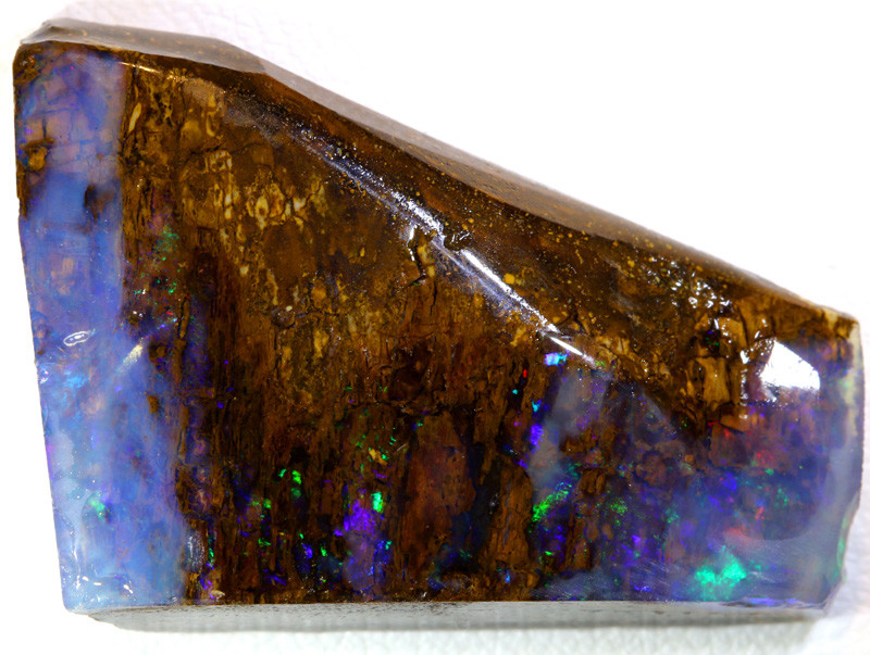 42- CTS  BOULDER OPAL WOOD FOSSIL  ROUGH DT-9870