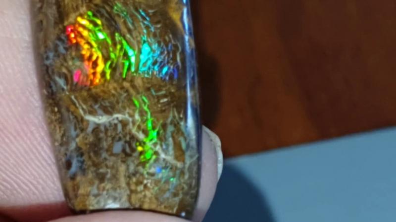 30.9 Ct Boulder opal from Opalton