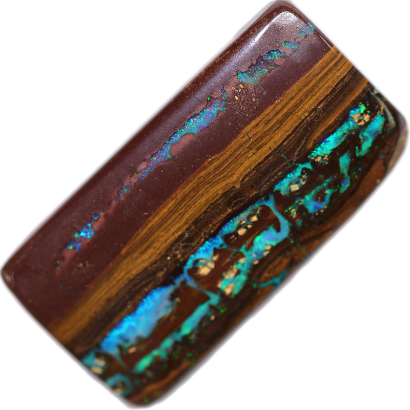 42.00 CTS BOULDER WOOD FOSSIL WELL POLISHED[BMA9217]